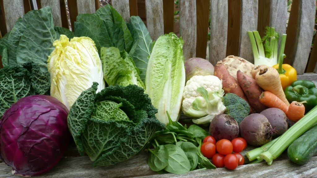 Best Leafy Greens For Guinea Pigs(+Serving Size)