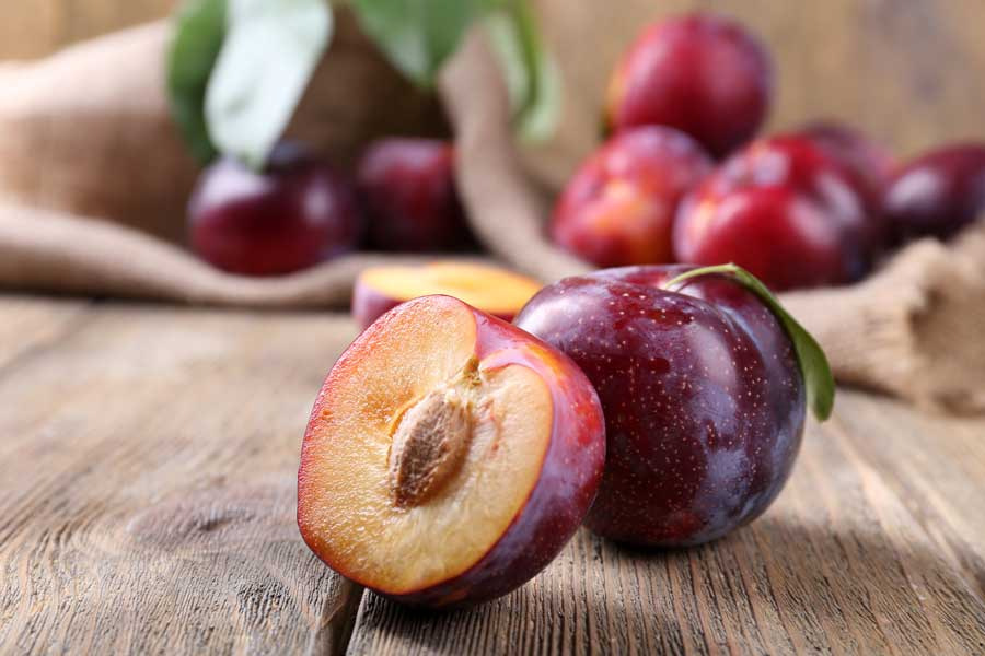 Can Guinea Pigs Eat Plums? (Hazards, Serving Size & More)