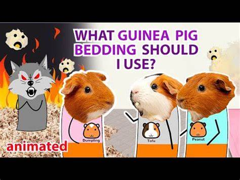 Guineadad fleece liner review: Is it a good choice?