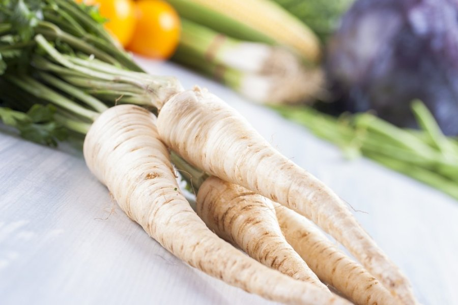 Can Guinea Pigs Eat Parsnips? (Hazards, Serving Size & More)